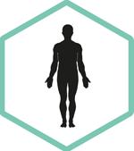 Fysiotherapie Bewust Utrecht